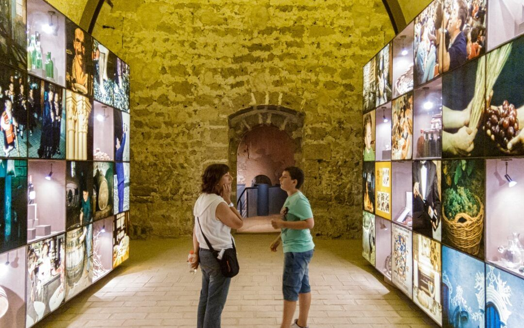 Museo del Vino de la D.O. Calatayud