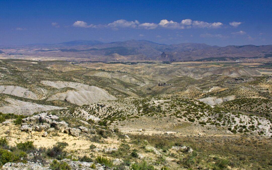 Muelas del Jiloca: El Campo y La Torreta